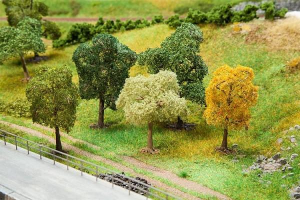 5 PREMIUM Bäume, sortiert, 70-100mm hoch