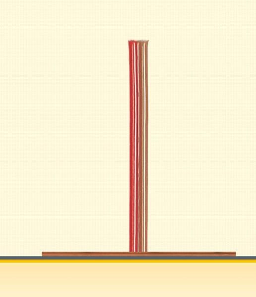 Doppell-Litze 0,25mm² 5m blau/rot