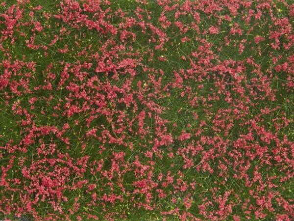 0/H0/TT-Bodendecker-Foliage, Wiese rot