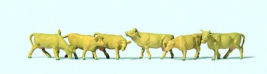 N-Kühe hellbraun