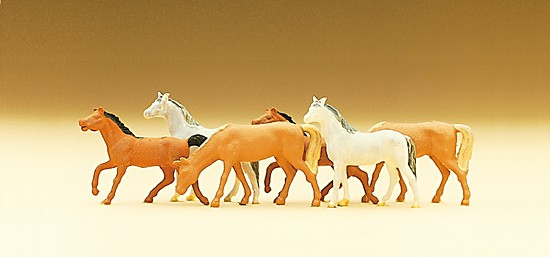 N-Pferde