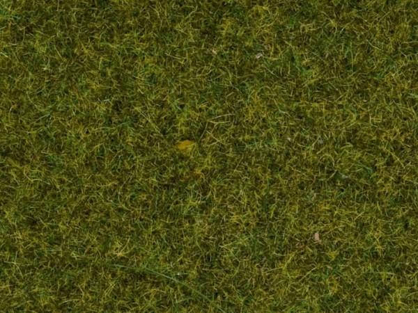 Gras Wiese 2,5 mm, 120 g, Dose