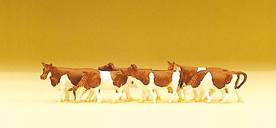 N-Kühe braun