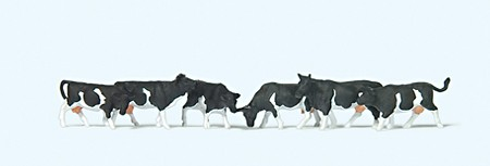 N-Kühe schwarz gefleckt