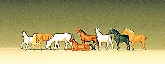 Z Pferde