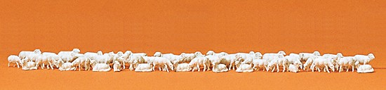 Schafherde, 60 Stück